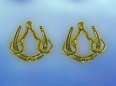 M2404ER Horseshoe and Bit Earrings