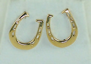 Earrings M810ER