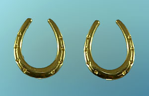 Horseshoe Earrings M727ER