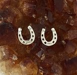 M2017ASS Horseshoe Earrings