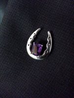 W1527SSLPA  Horse Shoe Lapel Pin with Amethyst